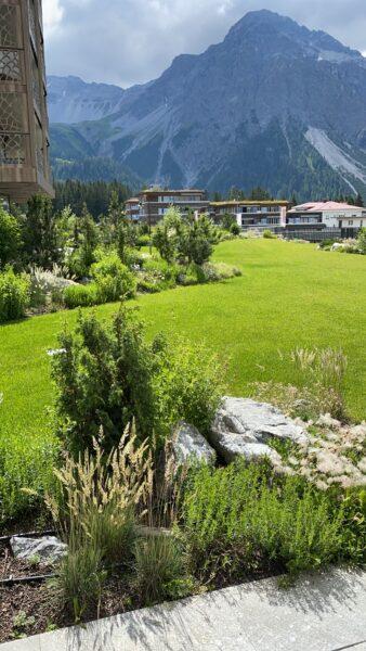 Grüne Wiese und Bergansicht in Arosa Schweiz